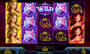 Casino Slot Amazon Beauties